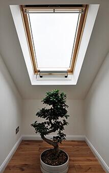 Skylight at Briarwood property